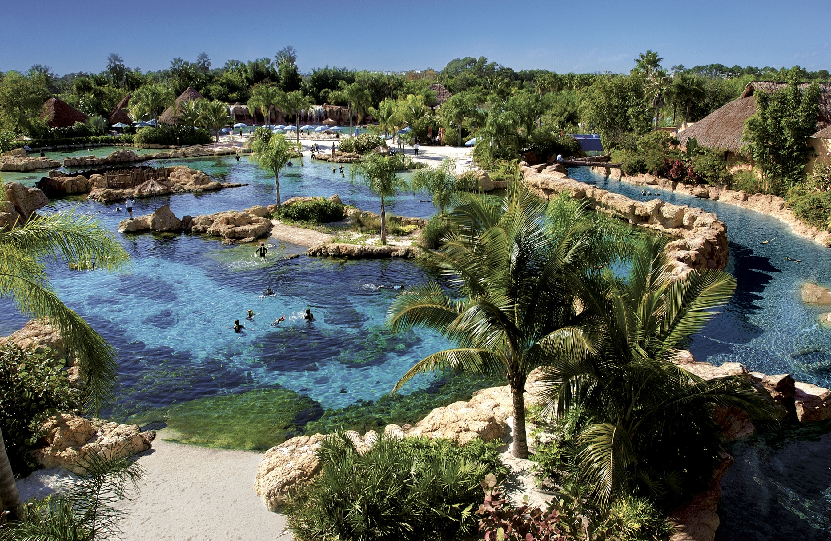 Discovery Cove Magical Distractions