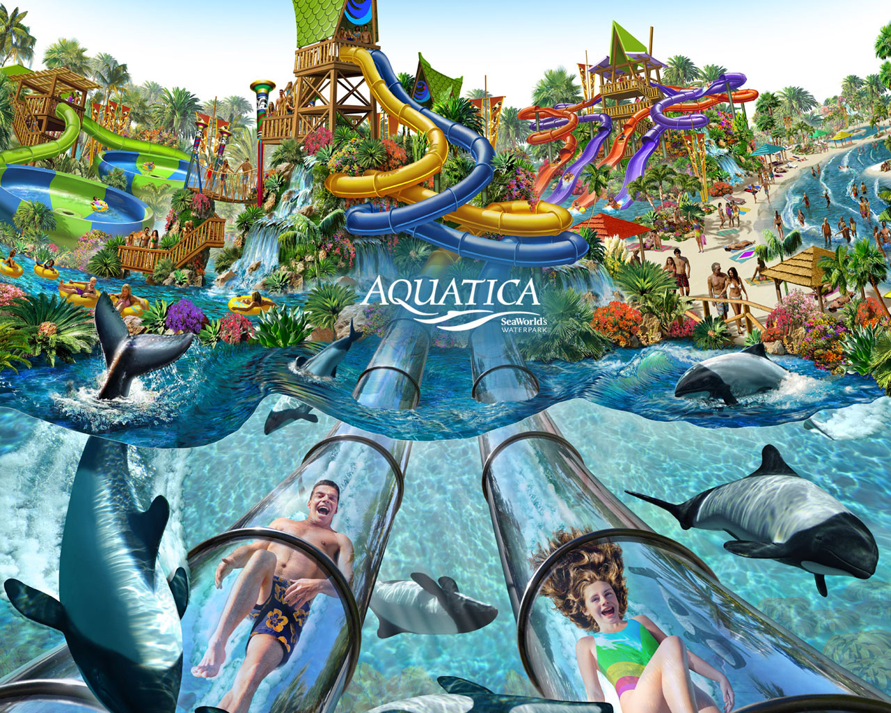 Aquatica orlando magical distractions for Florida cool