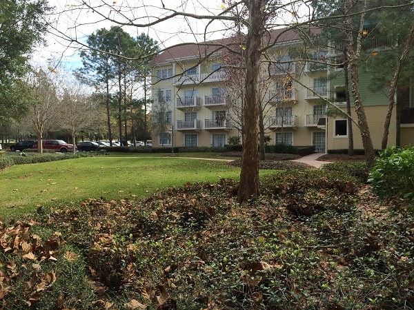 My review of a short stay at disney 39 s saratoga springs for Where to stay in saratoga springs ny